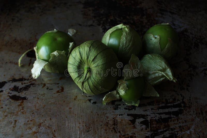 Fresh and green tomatillos stock photos