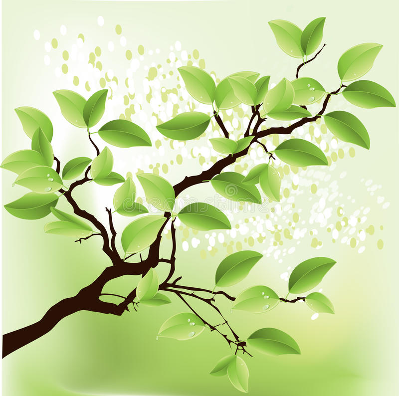 Fresh green tree stock illustration