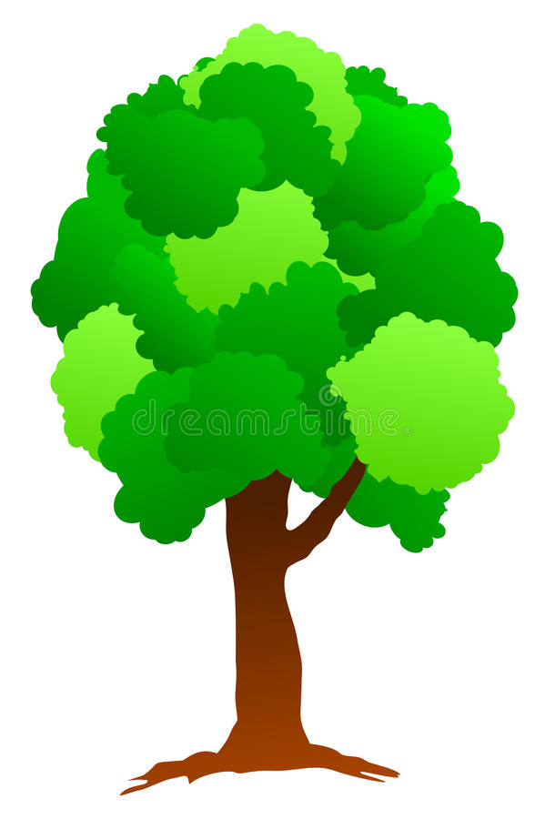 Fresh Green Tree stock photography