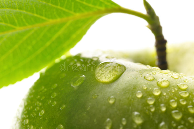 Download Fresh Green Wet Apple With Leaf Stock Image - Image: 17981855