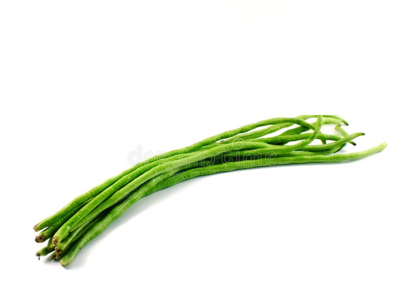 Green yard long bean isolated on white background stock photography
