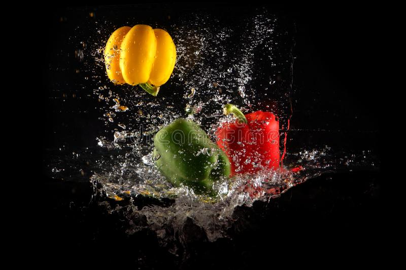 Fresh Green, Yellow and Red Bell Peppers with Water Splash and Bubble Isolated. Colorful Copy Space. Colored Paprika Dropped into royalty free stock photo