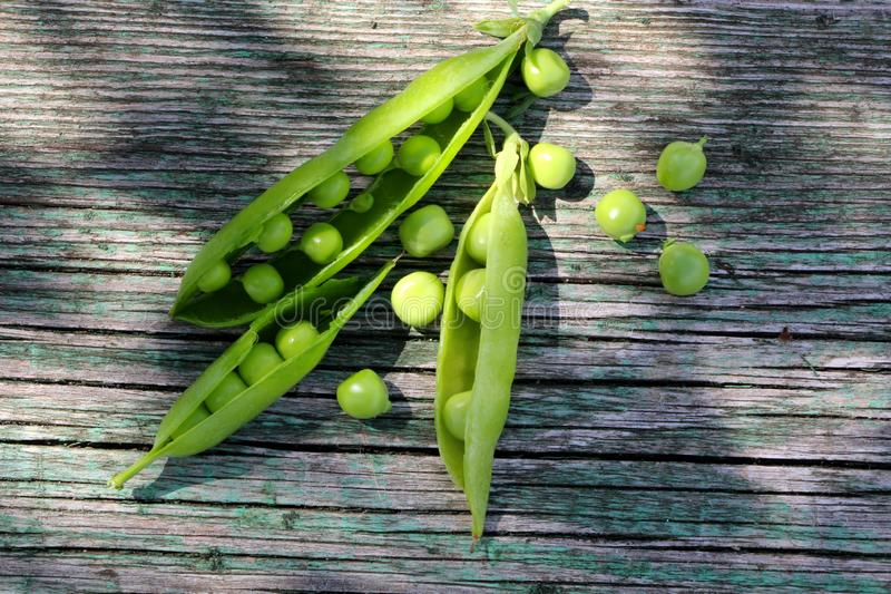 Fresh green young  open pea pods on wooden table. royalty free stock photo
