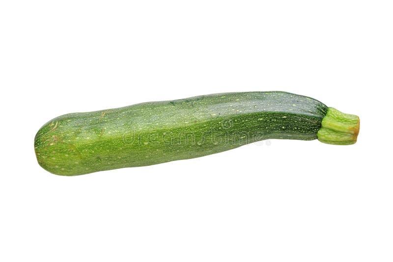 Fresh Raw Round Zucchini Isolated On White Stock Photo ...