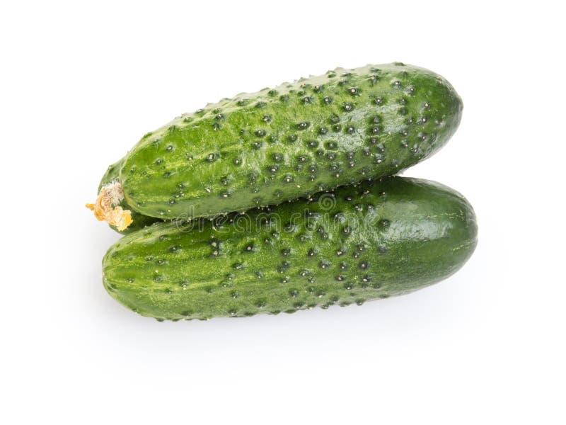 Fresh greenhouse cucumbers royalty free stock photo