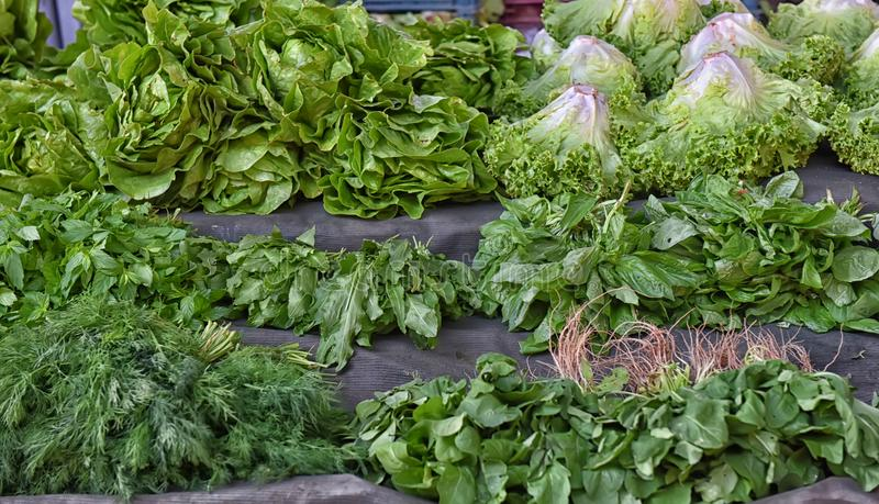 Fresh greens. On the market stock photography
