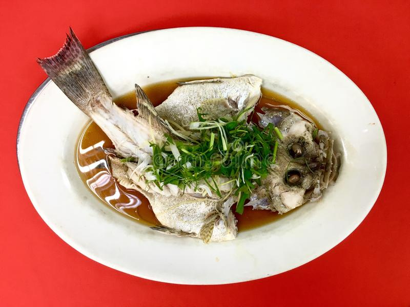 Fresh Grouper fish steamed in soy sauce royalty free stock images