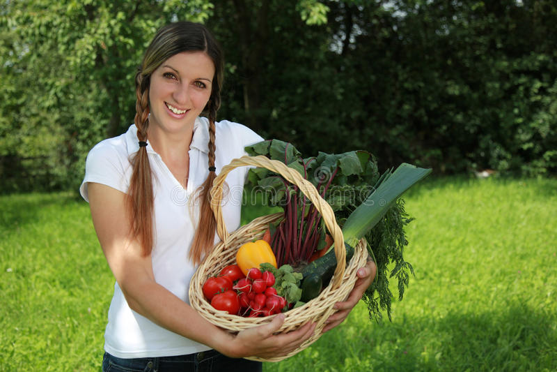 Fresh harvest royalty free stock images