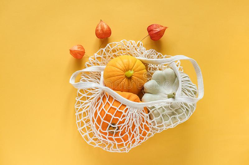 Fresh harvest vegetables gourds pumpkin, pattypan squash in shopping eco-friendly mesh bag, autumn physalis on yellow background. royalty free stock images