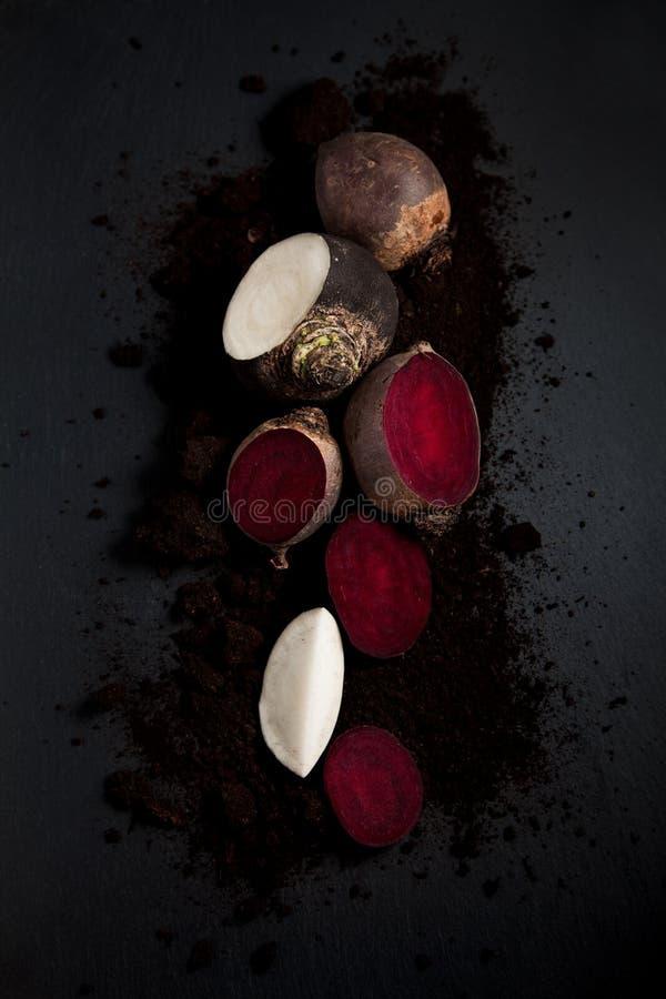 Fresh harvested beetroot and black radish on dark slate kitchen plate stock image