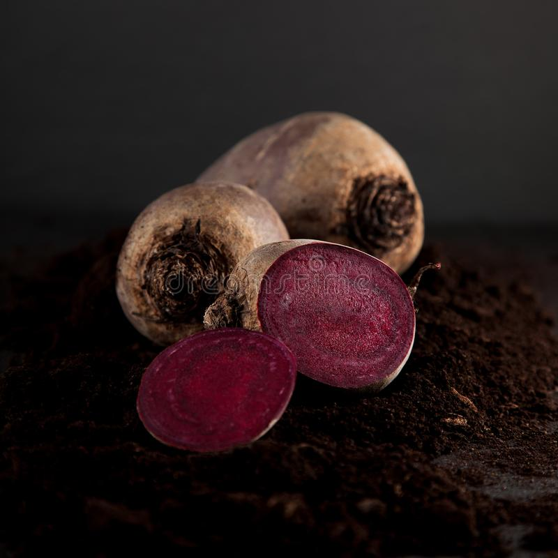 Fresh harvested beetroot on dark slate kitchen plate stock image