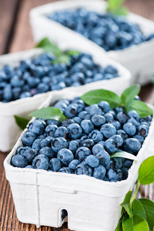 Fresh harvested Blueberries royalty free stock images