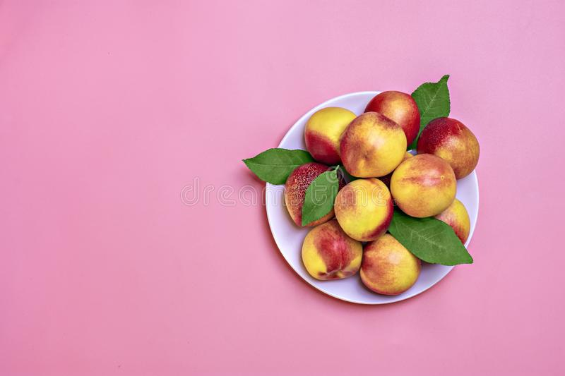 Fresh harvested nectarines, plate, leaves lies round on pink background Vegetables vitamin Keratin Natural Peach Organic stock photography