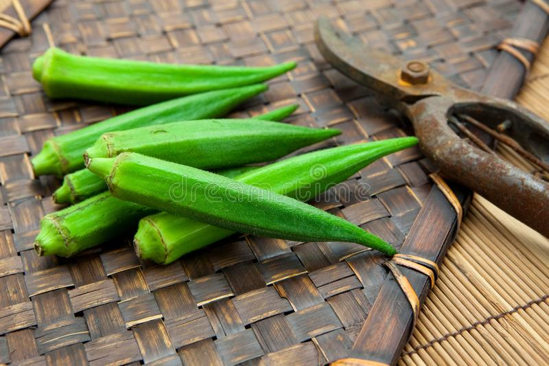 Download Fresh Harvested Okra On Bamboo Tray Stock Photo - Image: 13620720