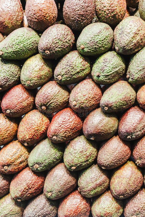 Fresh healthy avocado on farmer agricultural market royalty free stock images