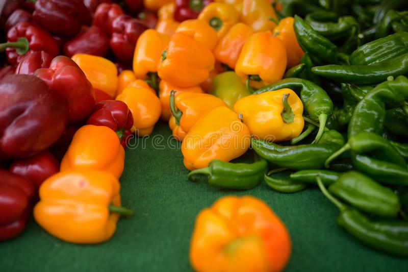 Fresh healthy bio red, green and yellow paprika on farmer agricultural market royalty free stock photos