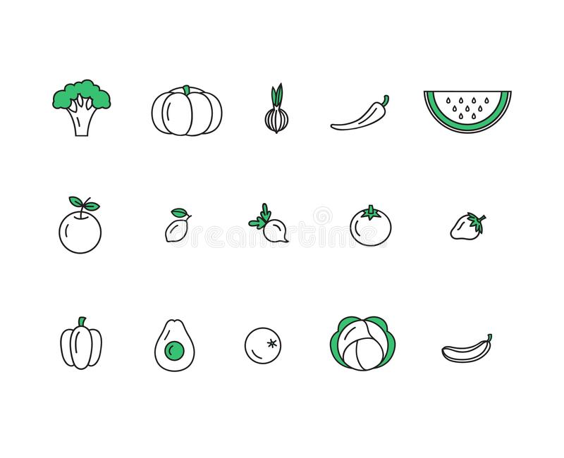 Fresh healthy fruit and vegetable icons made in trendy line style vector. stock image