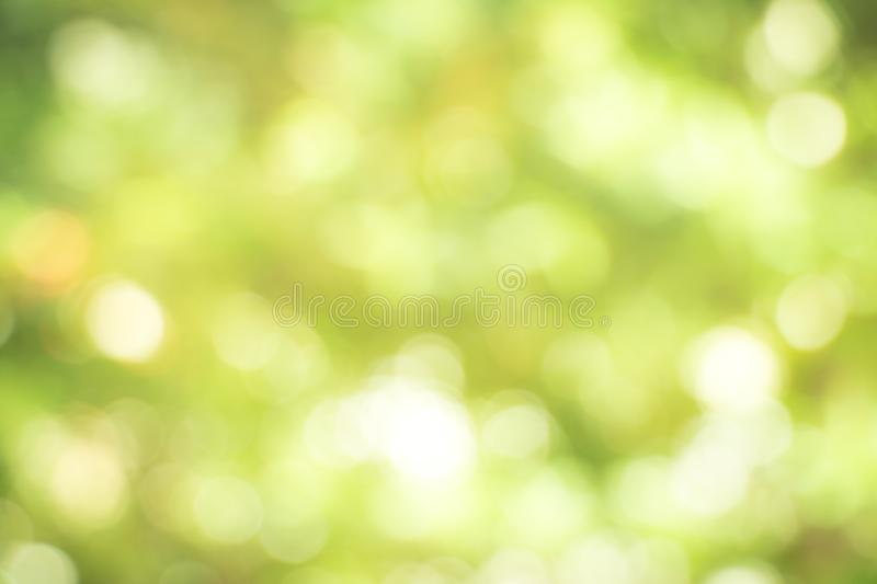 Fresh healthy green bio background with abstract blurred foliage royalty free stock images