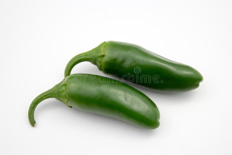 Fresh, healthy jalapeno pepper from my garden. Isolated background, multiple uses is possible royalty free stock images