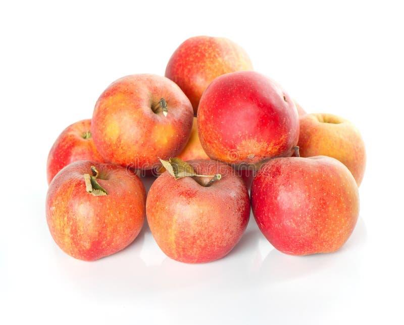 Fresh Healthy Organic Apples Royalty Free Stock Image
