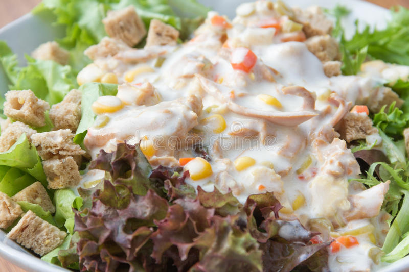 Fresh healthy salad on wooden background stock photography