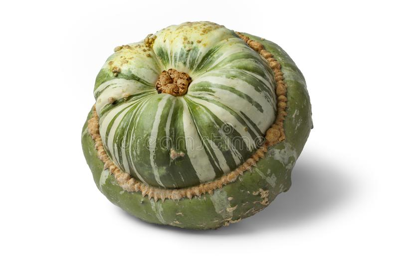 Fresh heirloom green Turban squash. On white background royalty free stock images