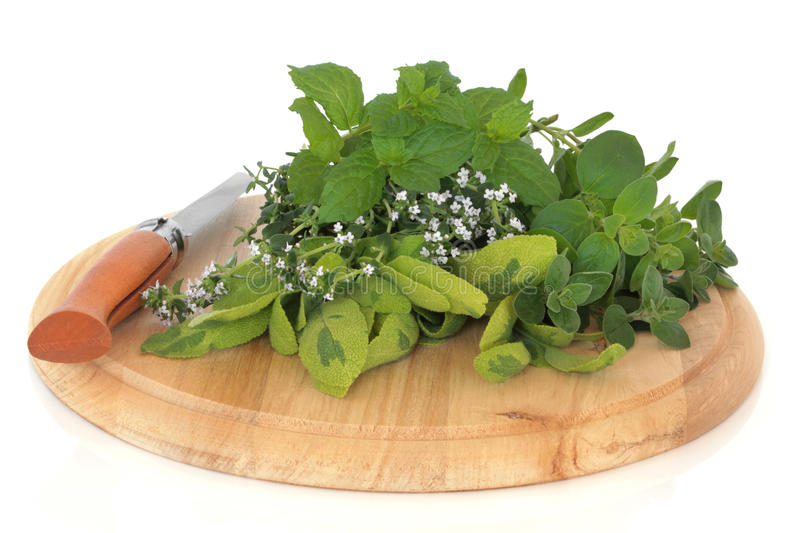 Fresh Herb Leaves stock images