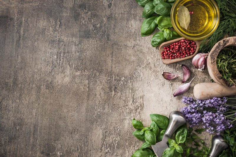 Fresh herb and spices border background stock images