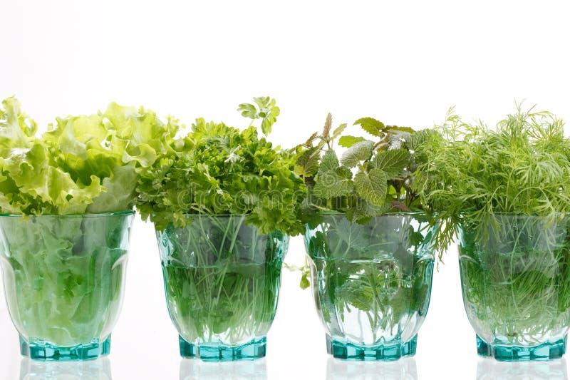 Fresh herbs royalty free stock photography