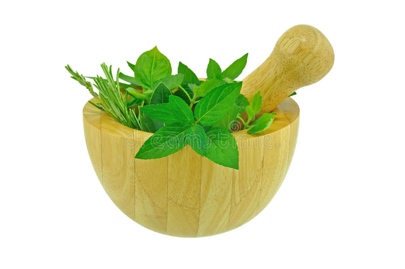 Download Fresh Herbs stock photo. Image of flavour, condiment - 21778214