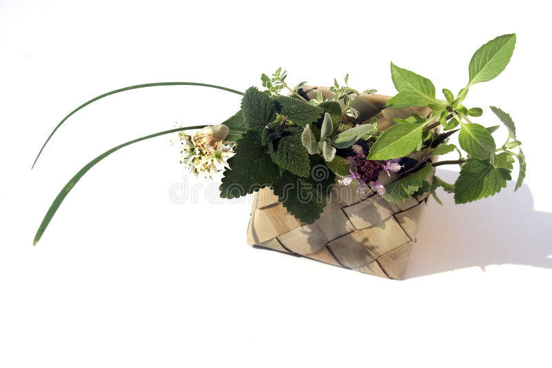 Fresh herbs in basket. Chives, melissa, catnip, sage, red basil, lemon thyme, thai basil stock images