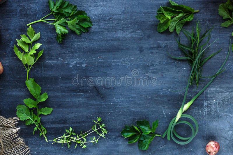Fresh herbs frame on dark background, top view royalty free stock photography