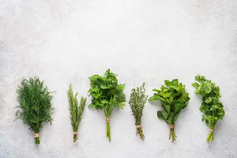 Fresh herbs on gray background. Various ingredients for cooking royalty free stock photography
