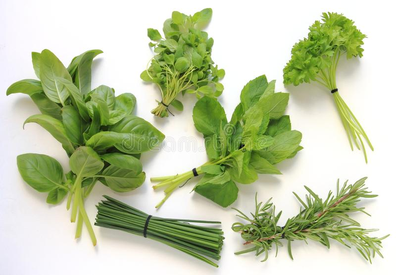 Fresh herbs isolated on white background stock photo