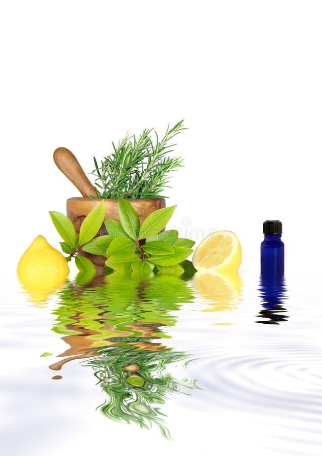 Fresh Herbs and Lemon Halves stock photo