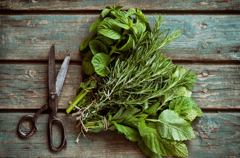 Fresh herbs stock image