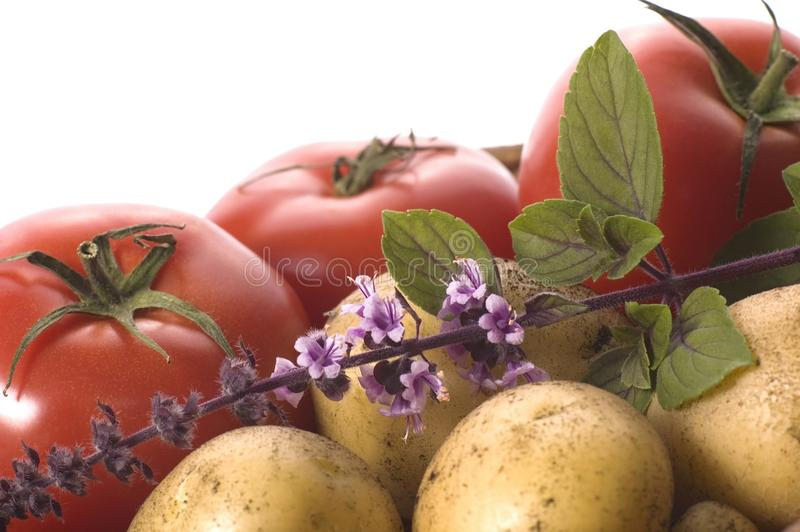 Fresh herbs and vegetables royalty free stock image