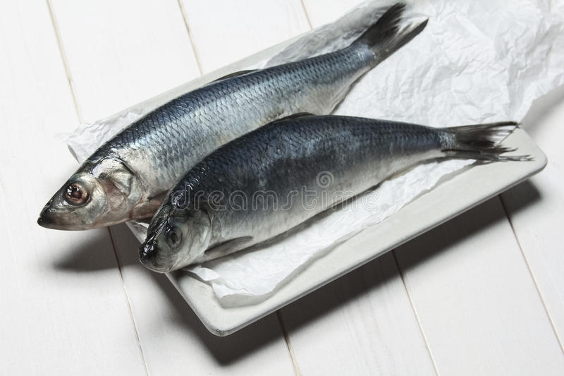 Fresh herring. On a white wooden background stock images
