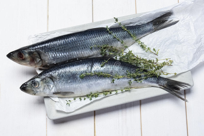 Fresh herring. On a white wooden background stock image