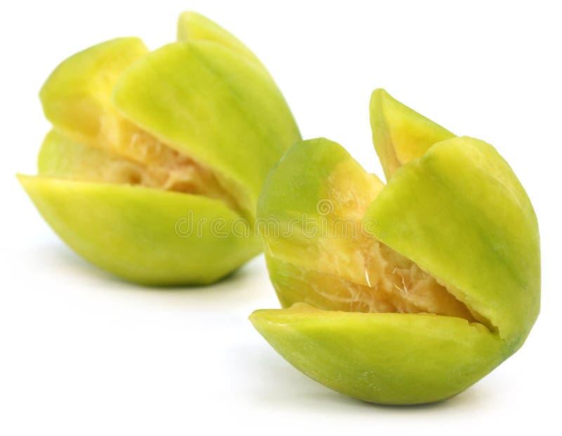 Fresh hog plum. Spondias or hog plum fruit over white background stock image