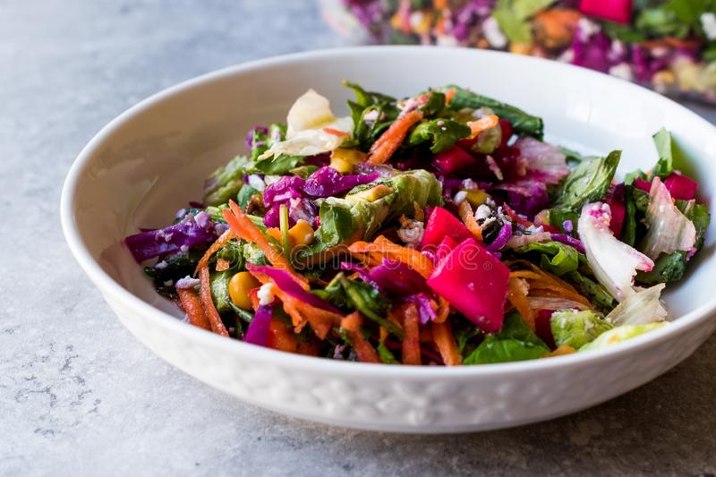 Fresh Homemade Colorful Salad with Purple Cabbage, Beet, Carrot and Rocket. stock image