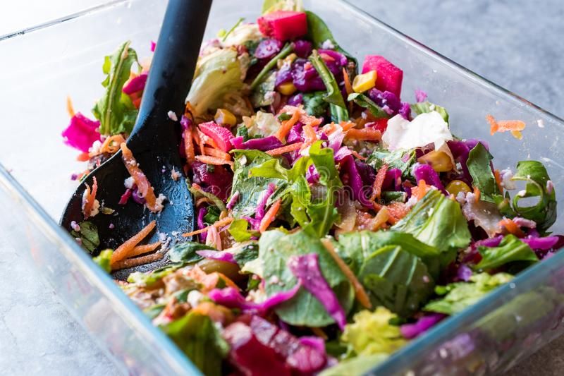 Fresh Homemade Colorful Salad with Purple Cabbage, Beet, Carrot and Rocket. royalty free stock image