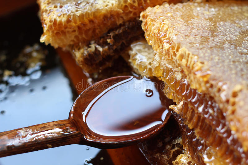 Fresh honey. On a wooden spoon royalty free stock photo