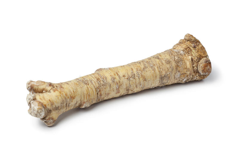 Fresh Horseradish royalty free stock photo