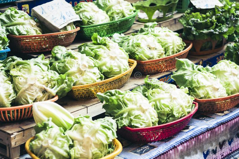 Fresh iceberg lettuce in the fruit market, Catania, Sicily, Italy.  stock photography