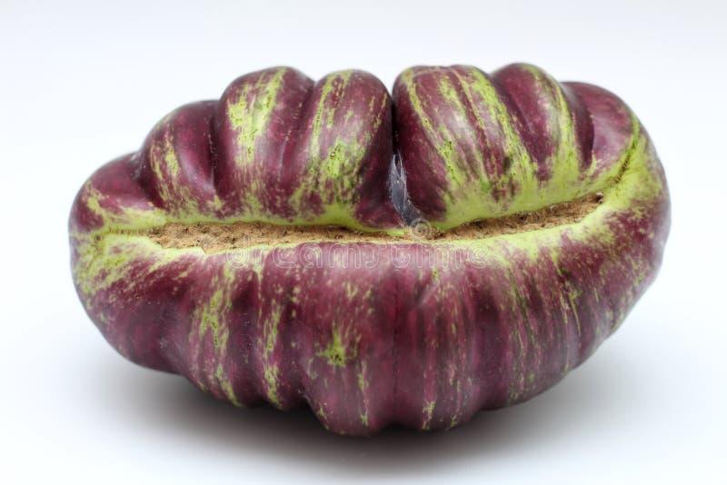Fresh isolate graffiti eggplant or aubergine unusual shape on white background. Clipping path. Health, farming, striped, eggplants, violet, vitamin, wholesome stock photography
