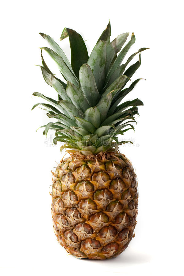 Free Fresh Isolated Ananas Royalty Free Stock Photography - 11818187