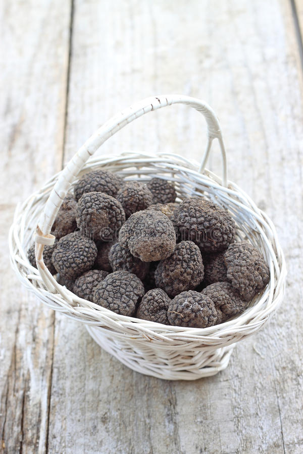Fresh italian truffles. Fresh italian truffkes from Norcia city royalty free stock photo