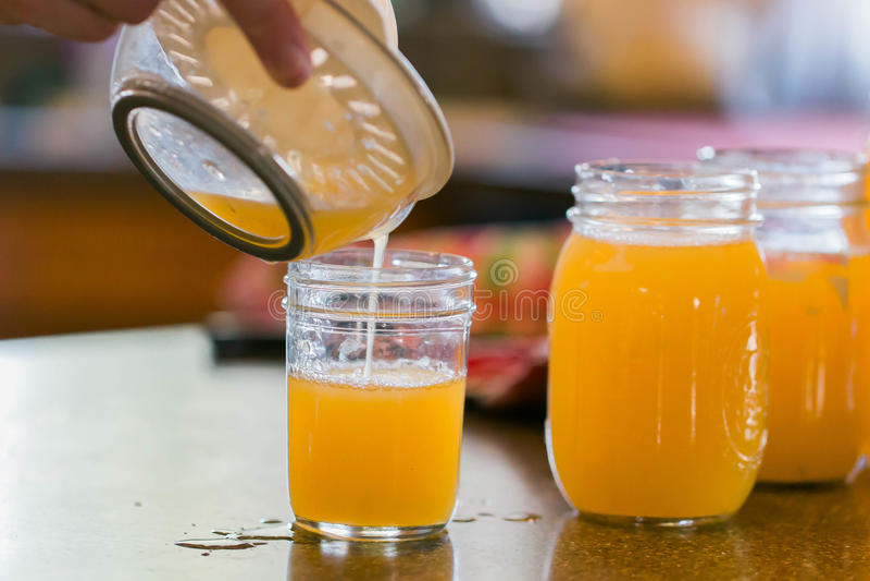 Fresh Juice royalty free stock photo