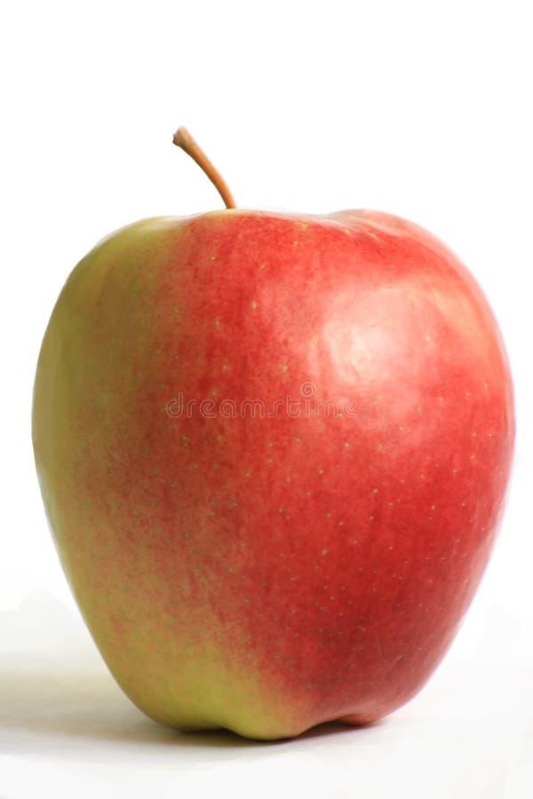 Free Fresh Juicy Apple Royalty Free Stock Photo - 9192255